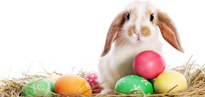 Happy-Easter-2016-2017-2018-2019-20202